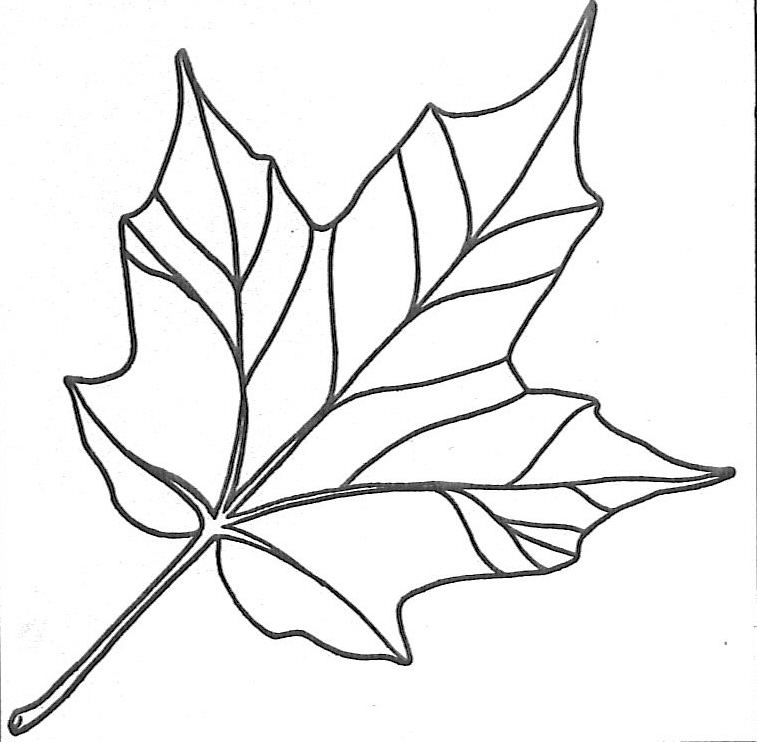 Yogurt Colouring Pages : Indiana pure maple syrup annual festival